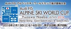 2016年2月アルペンスキーワールドカップ湯沢苗場大会